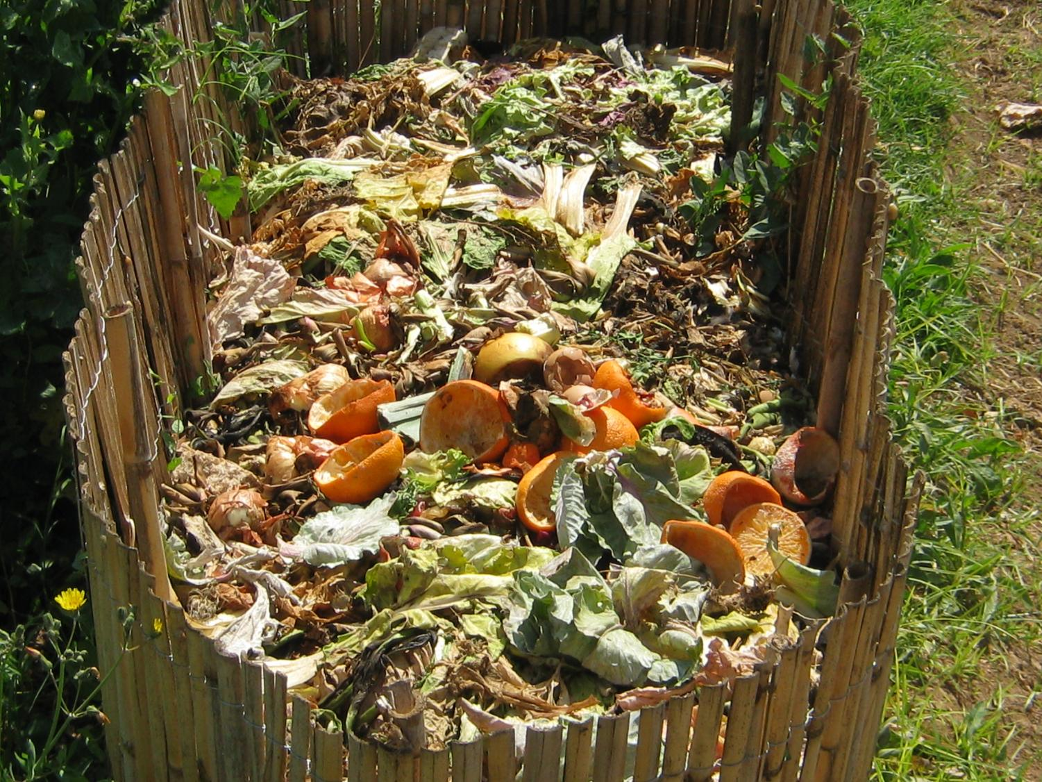 Compost with a mixture of organic material.