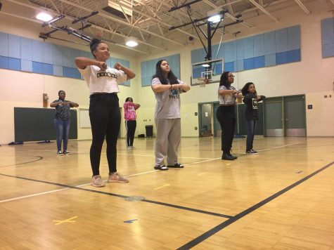 Picture of the Step Team practicing their routine for the Shamrock Fest in the RCMS Gym.