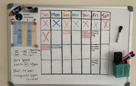 This is a schedule that Anjali Bora uses to keep herself organised.